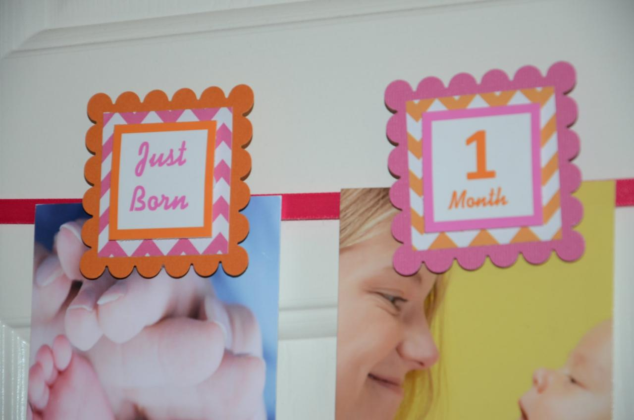 First Year Photo Clips, First Year Banner, Chevron Print, Hot Pink and Orange, Chevron Print Theme