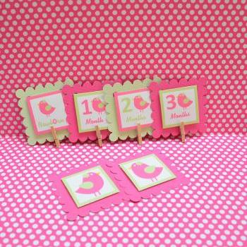 First Year Photo Mini Clips, First Year Banner, Bird Birthday Party, Any Theme,Hot Pink and Light green